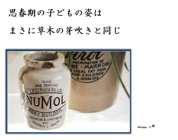 壮絶反抗期の子どもをもつ【母の叫び相談室】「思春期の子どもの姿はまさに草木の芽吹きと同じ」東京・神奈川・千葉・埼玉、首都圏でご相談窓口を開いています。運勢鑑定 高橋肖鳳